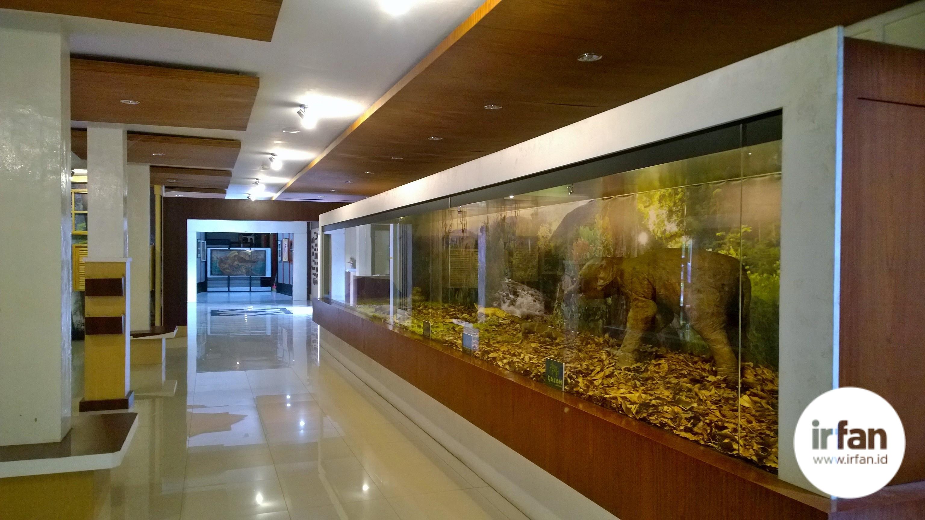 FOTO: Museum Negeri Aceh, Wisata Sejarah Yang Wajib Dikunjungi 32