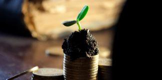 Pengalaman dapat dividen saham